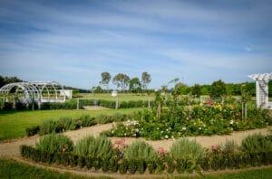 Wedding & Event Venue Shoalhaven NSW | Figbird Cottage